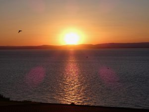 coast-caravan-park-clevedon-sunset-birds.jpeg
